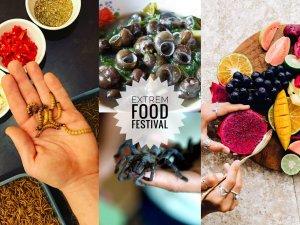Extrem food a travel festival Bratislava @ Amfiteáter Rača | Bratislava | Bratislavský kraj | Slovensko